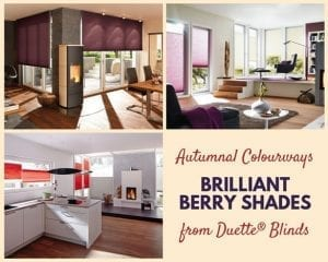 Collage of images showing Duette blinds in warming autumnal colours