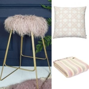 Pastel colour home accessories and cushions